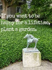 Happy for a lifetime plant a garden~