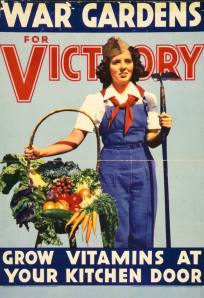 Grow Vitamins at your Kitchen Door War Gardens for Victory