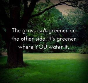 Grass greener where you water it