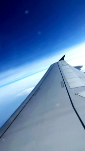 ON a Wing of a plane